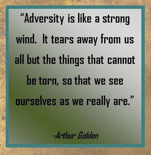 arthur golden on strength but i digress