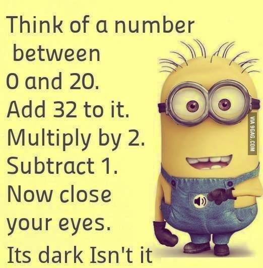 Minion Quotes Wtf: ... But I Digress